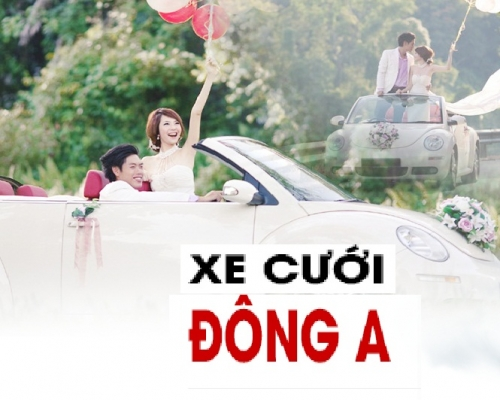 CHO-THUE-XE-CUOI-DONG-A